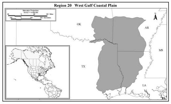 East Gulf Coastal Plain Louisiana West Gulf Coastal Plain More