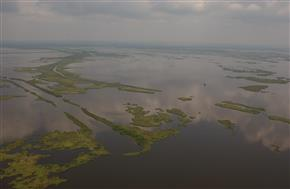 As coastal marshes turn into open water, the economic and ecological health of the nation is increasingly threatened.